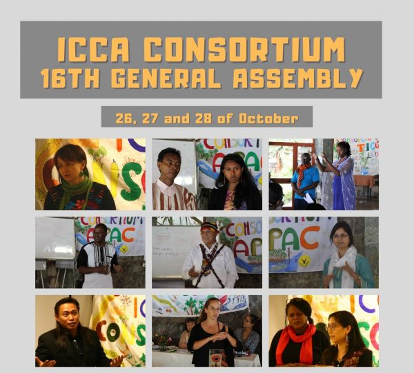 16th General Assembly held online