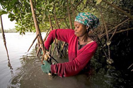 '30 X 30' est une distraction, maintenez l'accent sur la gestion holistique des océans par les Peuples Autochtones et les communautés locales