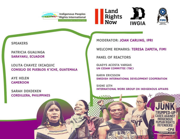Webinar recap: Indigenous women at risk for defending their lands, rights and dignity
