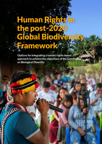 Integrating human rights into the post-2020 global biodiversity framework