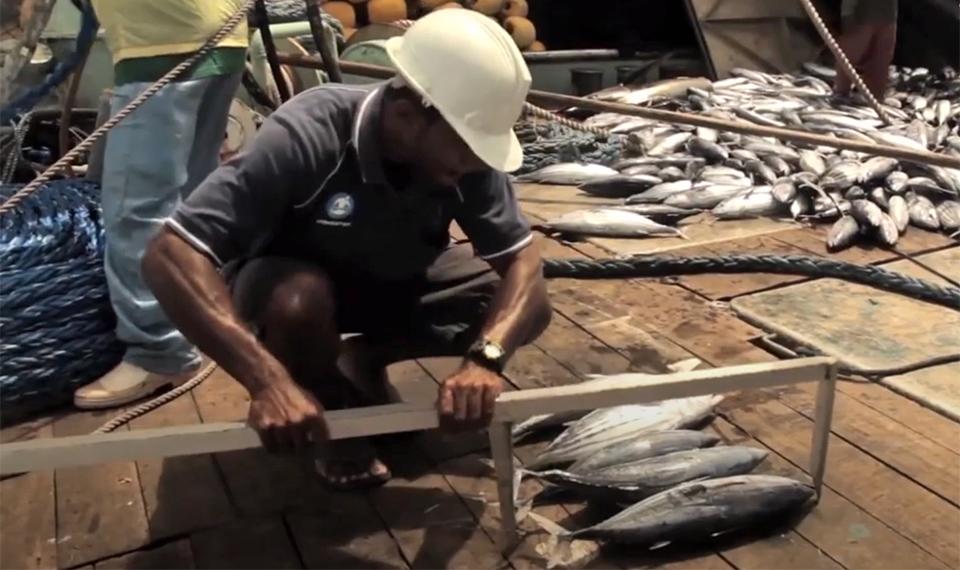 Les nations du Pacifique construisent une gouvernance holistique des océans ; sans des changements majeurs, la campagne 30 x 30 risque de détruire ce processus