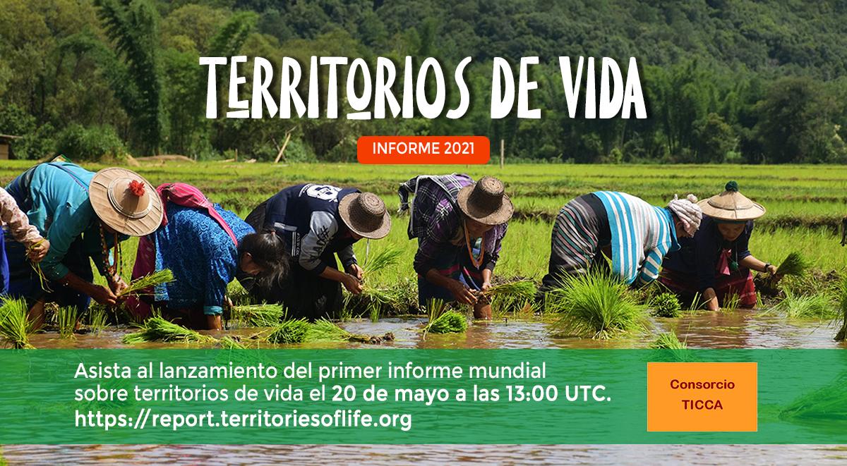 El Consorcio TICCA anuncia su próximo informe sobre territorios de vida de Pueblos Indígenas y comunidades locales