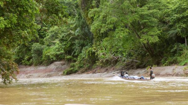OPINIÓN: Conservar la naturaleza, proteger los derechos humanos