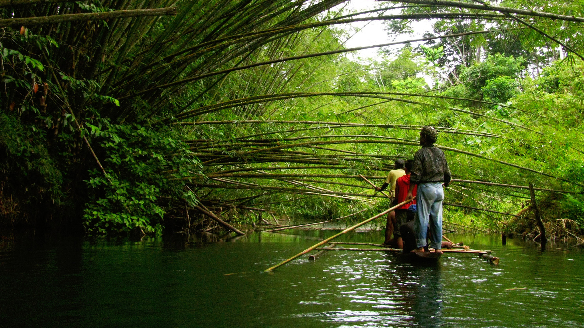Indigenous leader advocates for rights and territories of life at ASEAN biodiversity conference
