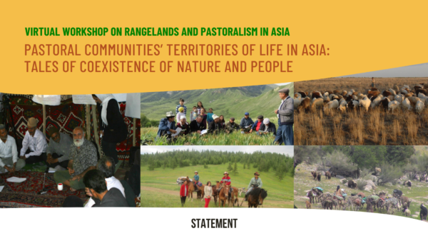 Statement from the virtual workshop on rangelands and pastoralism in Asia