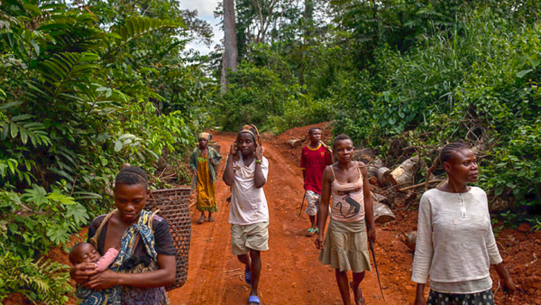 Growing calls to place human rights at the center of new global biodiversity framework