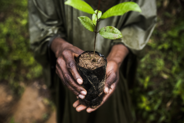 New guidance on integrating human rights into the global biodiversity framework