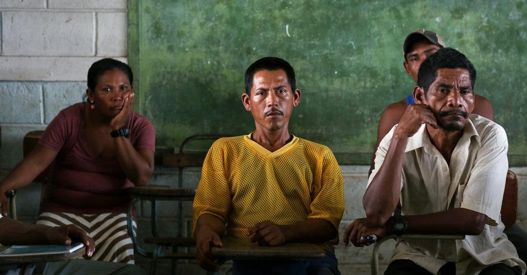 Nicaragua: Continúan los horribles ataques mortales contra los Pueblos Indígenas Miskitu y Mayangna en la Reserva de la Biosfera de Bosawás